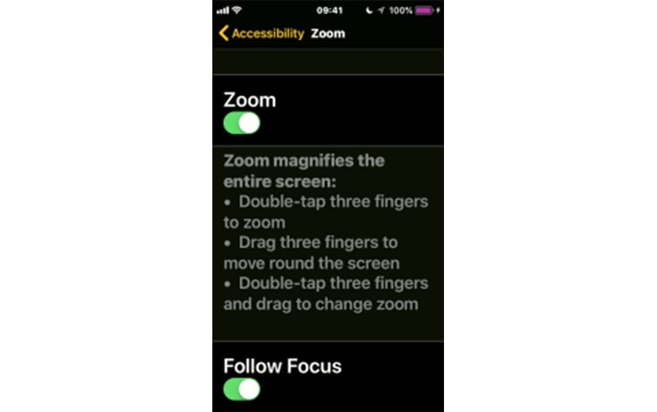 Iphone accessibility screenshot zoom function