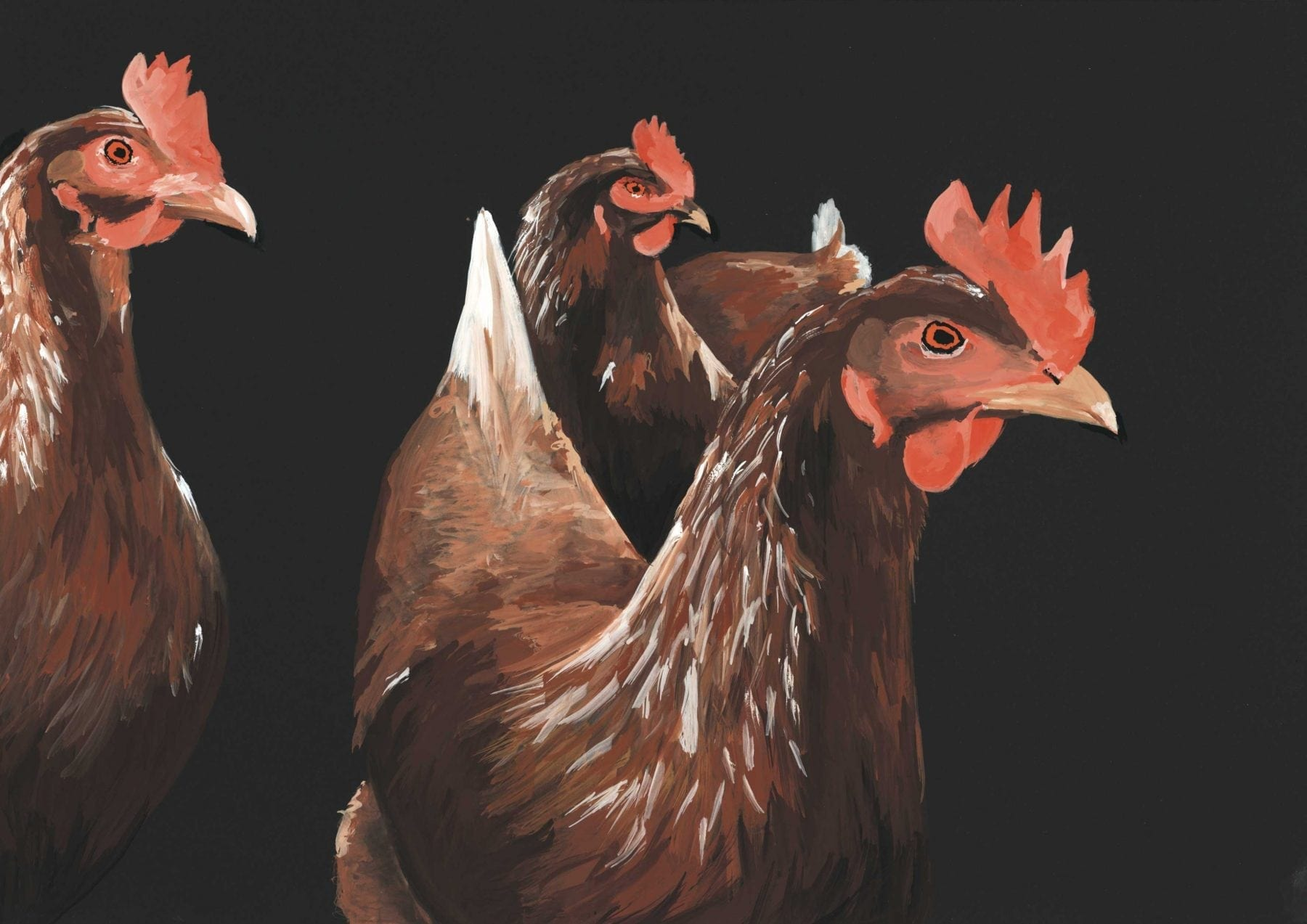 Painting by mouth artist Henry Fraser of three chickens painted in gouache watercolour on a black canvas